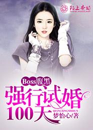[文心书阁]女频长篇小说《Boss腹黑:强行试婚100天》已完本共429章