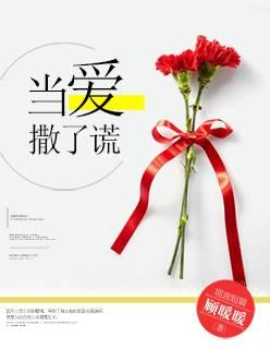 [文心书阁]女频短篇小说《当爱撒了谎》已完本共37章