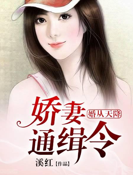[文心书阁]女频长篇小说《婚从天降:娇妻通缉令》已完本共451章