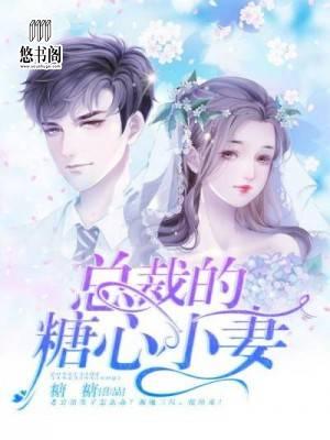 沈寒,洛小姐(吻安,沈先生)最新章节全文免费阅读